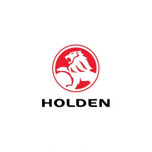 Lee Carseldine drives with Holden